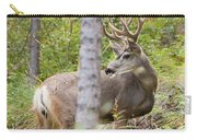 Beautiful Mule Deer Buck With Velvet Antler  Carry-all Pouch