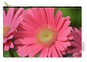 Beautiful Pink Gerber Daisies Carry-all Pouch