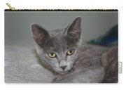 Beautiful Portait Of A Grey Russian Tabby Cat Carry-all Pouch