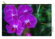 Beautiful Purple Orchid - Phalaenopsis Carry-all Pouch