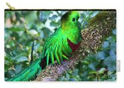 Beautiful Quetzal 2 Carry-all Pouch