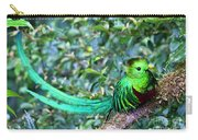 Beautiful Quetzal 3 Carry-all Pouch