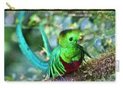 Beautiful Quetzal 5 Carry-all Pouch