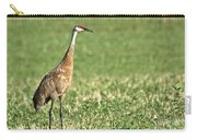 Beautiful Sandhill Crane Carry-all Pouch