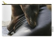 Beautiful Sea Lion Carry-all Pouch