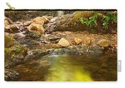 Beautiful View Of Upper Falls Located In Uvas Canyon County Park Forest Reflection Carry-all Pouch