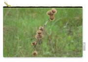 Prickly Histle Beauty Among The Grasses Carry-all Pouch