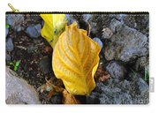 Beauty Among The Rocks Carry-all Pouch