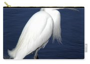 Beauty Incarnate Carry-all Pouch