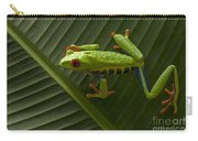 Beauty Of Tree Frogs Costa Rica 8 Carry-all Pouch