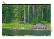 Beaver Dam In Heron Pond In Grand Teton National Park-wyoming Carry-all Pouch