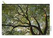 Beech Tree Canopy 2 Carry-all Pouch