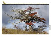 Beech Tree, Chile Carry-all Pouch