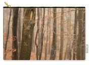 Beech Wood In Autumn Carry-all Pouch