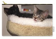 Beethoven Symphony At Rest Carry-all Pouch