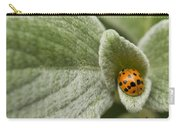 Beetle Pad Carry-all Pouch
