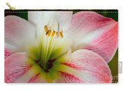 Belladonna Lily Detail Carry-all Pouch