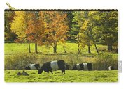 Belted Galloway Cows Grazing On Grass In Rockport Farm Fall Maine Photograph Carry-all Pouch by Keith Webber Jr