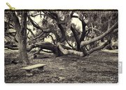Bench And Trees Bw Carry-all Pouch