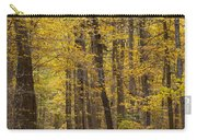 Bench In Fall Color Carry-all Pouch