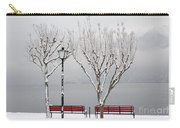 Bench On Lakefront In Winter Carry-all Pouch