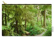 Bend In The Rainforest Carry-all Pouch