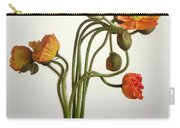 Bendy Poppies Carry-all Pouch by Norman Hollands