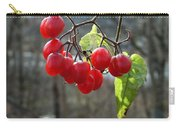 Berries In Winter Carry-all Pouch