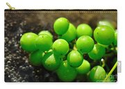 Berries On Water Carry-all Pouch by Kaye Menner