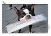 Betty The News Dog Carry-all Pouch