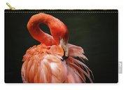 Big Bird Carry-all Pouch