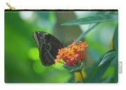 Big Boy Butterfly Carry-all Pouch