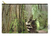 Big California Redwood Tree Forest Art Prints Carry-all Pouch