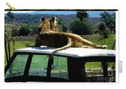 Big Cat Just Resting Carry-all Pouch