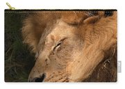 Big Cat Nap Carry-all Pouch