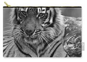Big Cats 10 Carry-all Pouch