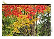 Big Colorful Sleep Carry-all Pouch