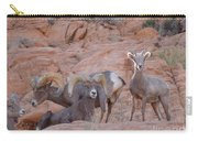 Big Horn Group Pose Carry-all Pouch