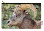 Big Horn Carry-all Pouch