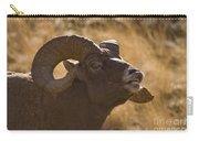 Big Horn Ram   #4856 Carry-all Pouch