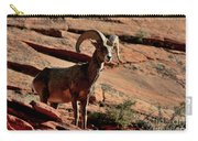 Big Horn Ram At Zion Carry-all Pouch