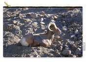 Big Horn Sheep Close Up Carry-all Pouch
