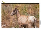 Big Horn Sheep Ewe Carry-all Pouch