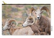 Big Horns Carry-all Pouch