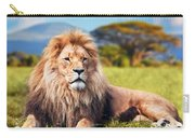 Big Lion Lying On Savannah Grass Carry-all Pouch