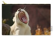 Big Mouth Carry-all Pouch