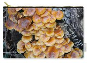 Big Mushrooms Family Carry-all Pouch