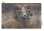 Big Rams Carry-all Pouch