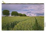 Big Sky Montana Wheat Field  Carry-all Pouch
