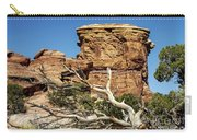 Big Spring Canyon Overlook Carry-all Pouch